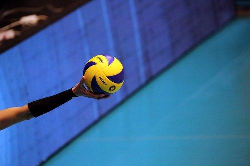 volleyball  premium  player