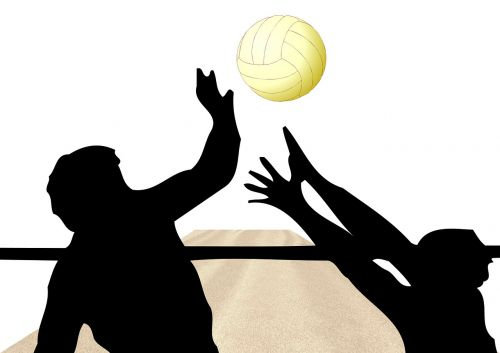 Volleyball,player,spike,athlete,volley - free image from ...
