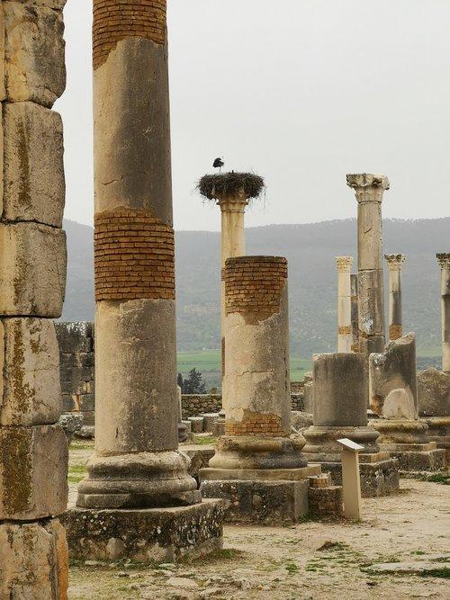 volubilis  stones  romans