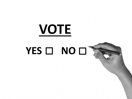 vote poll election