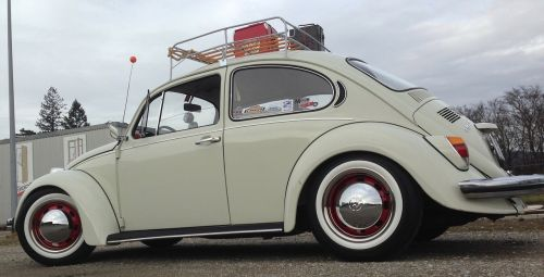 vw beetle auto