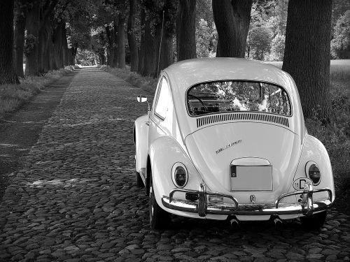 vw beetle oldtimer