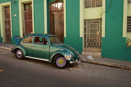 vw beetle vw beetle