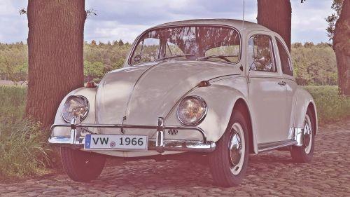 vw beetle old photo beetle