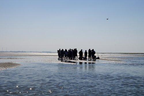 wadden sea  watt hike  intertidal zone