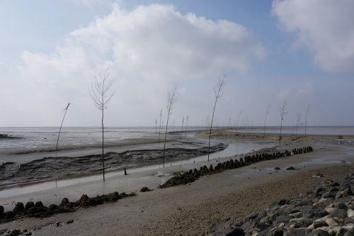 wadden sea ebb fairway
