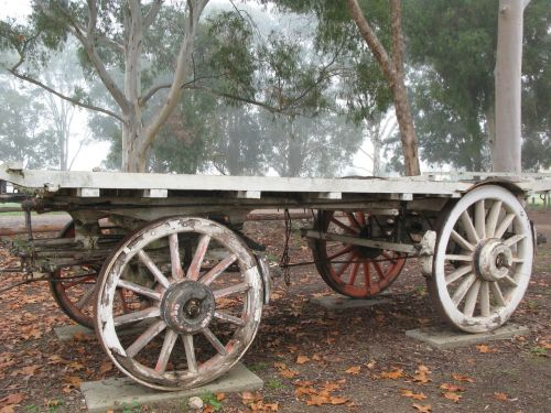 wagon australia bush