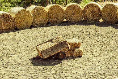 wagon bales hay