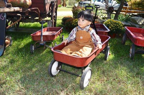 wagon  kid  happy