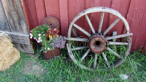 wagon wheel farm farmer