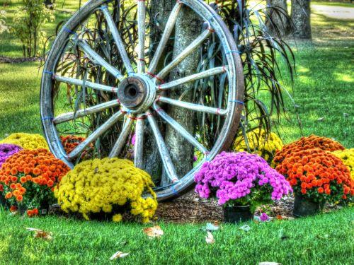 Wagon Wheel With Flowers