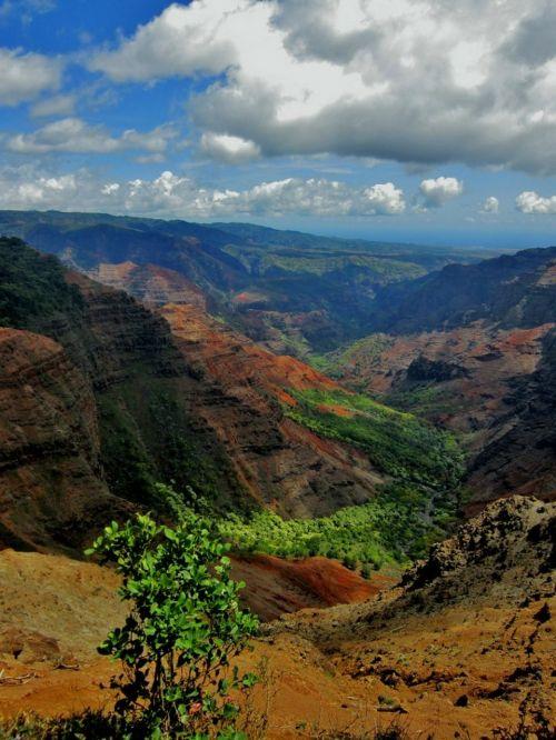 waimea canyon hawaii kauai