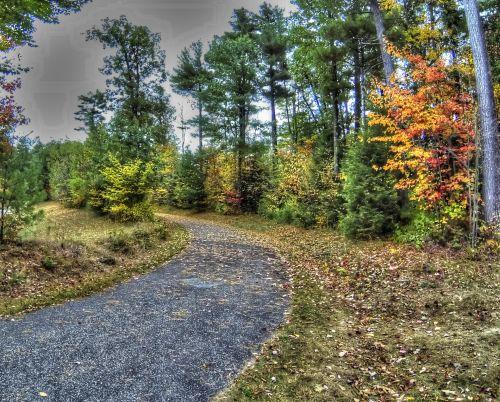 Waking Path