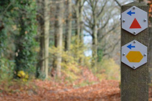 walk walking path arrows