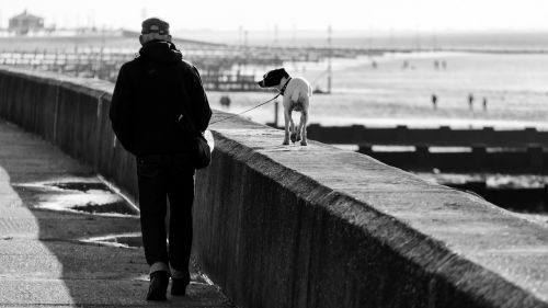 walk dog seaside