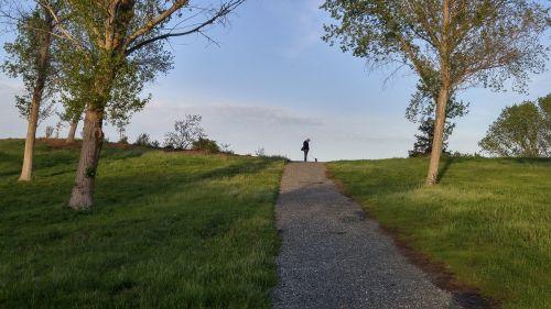 vaikščioti,šuo,parkas,kelias,vyras,pėsčiųjų šunį,naminis gyvūnėlis,vaikščioti,gyvūnas,mielas