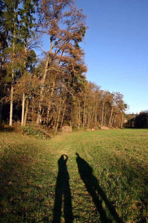 walk autumn shadow