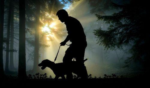 walk man dog