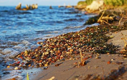 walk on the beach  pebble beach  colorful gravel