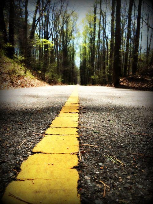 walking path trail