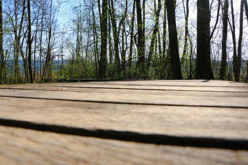 walking bridge nature conservation flagstone path