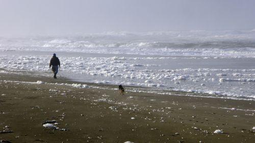 papludimys, vandenynas, jūra, jūros putos, vaikščioti, vaikščioti, ramus, vaikščioti paplūdimyje