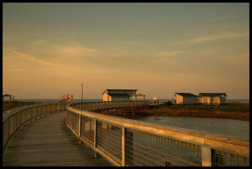 takas,tiltas,pėsčiųjų tiltas,kelias,mediena,vandenynas,vanduo,medinis,vaizdingas,turizmas,kelias,pėsčiųjų takas,kirsti,pėsčiųjų