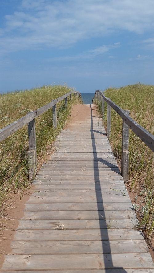 walkway bridge coastal
