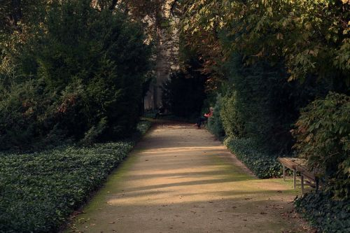 walkway park vegetation