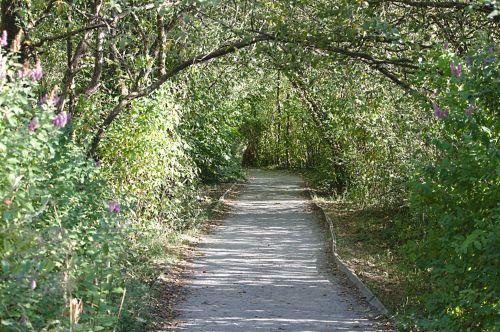 Walkway Via Park