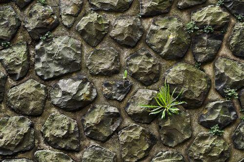 wall stone stone wall