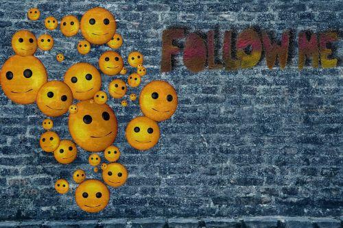 wall blog follow
