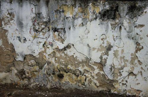 wall painting peeled