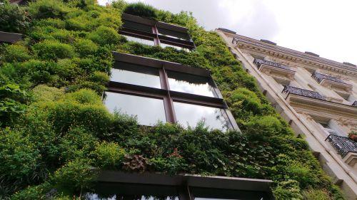 wall eco eco wall