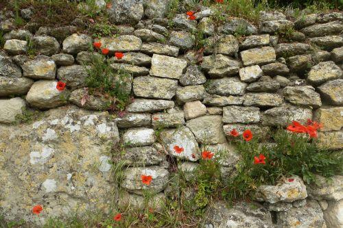 wall stones brick wall