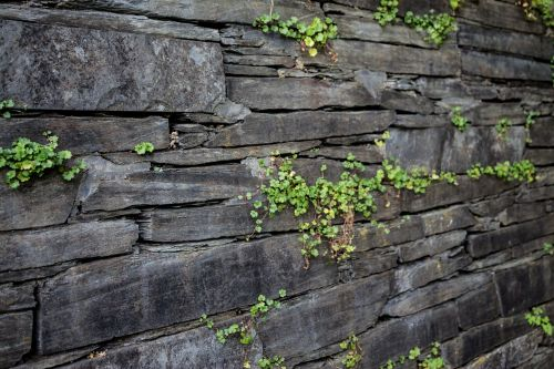 wall structure stone