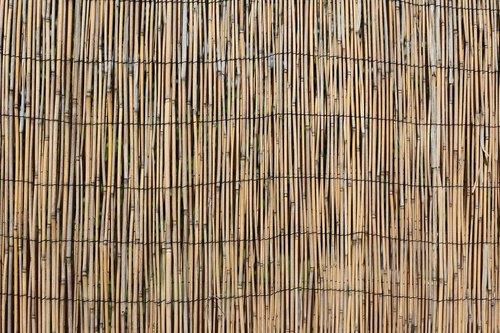 wall  divider  hawaii
