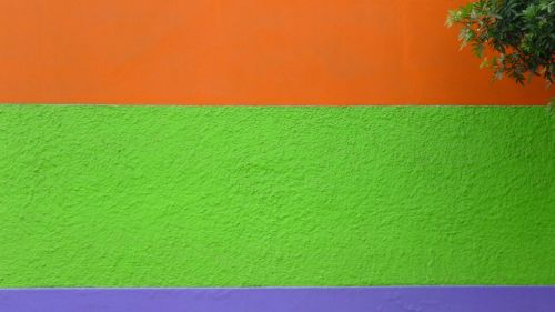 wall color green