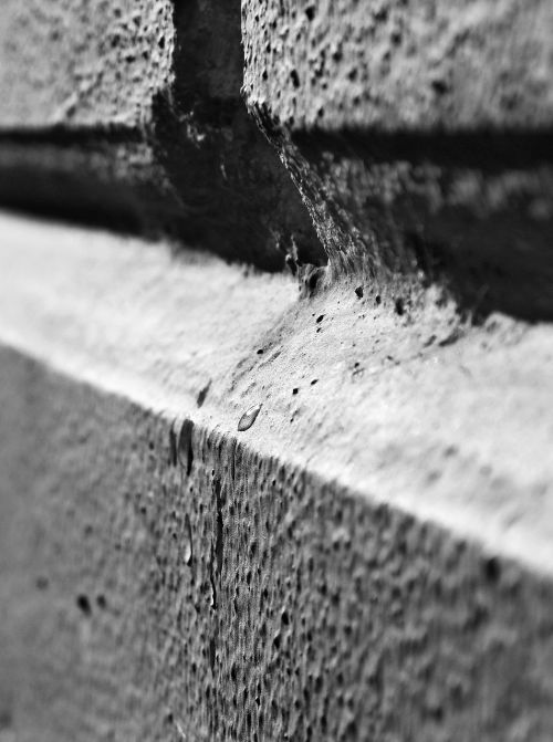 wall black and white macro