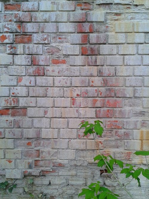 wall,brick,old,block,grunge,texture,backdrop,rough,brickwall,rusty,free photos,free images,royalty free