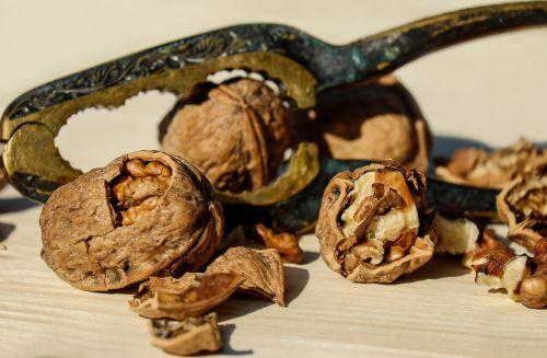 walnut nut brown