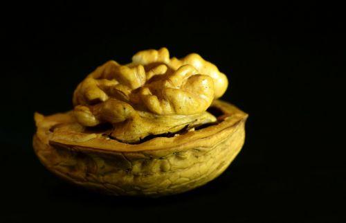 walnut nut seeds