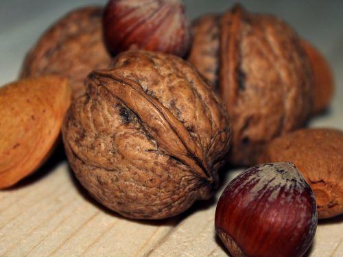 walnut hazelnut almonds