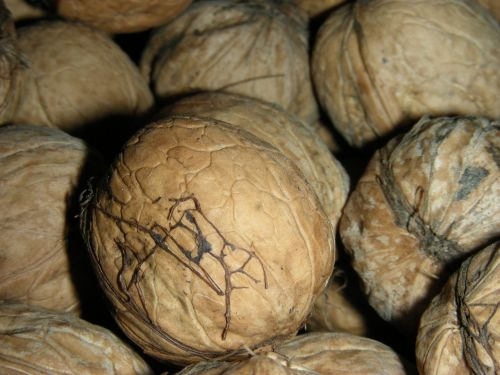 walnut macro crop
