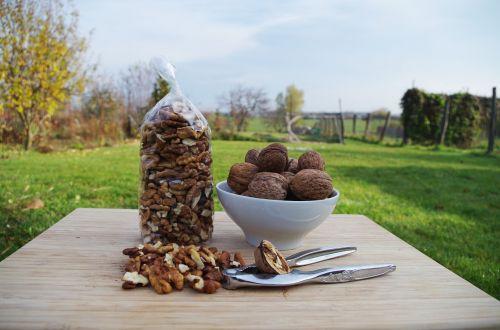 walnuts peeled bowl