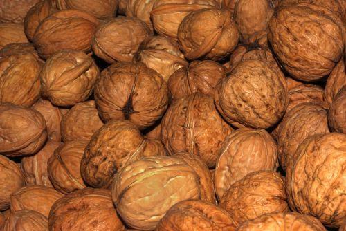 walnuts nuts walnut