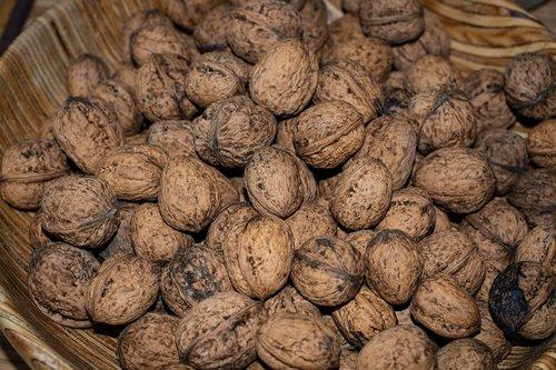 walnuts  shell  bio