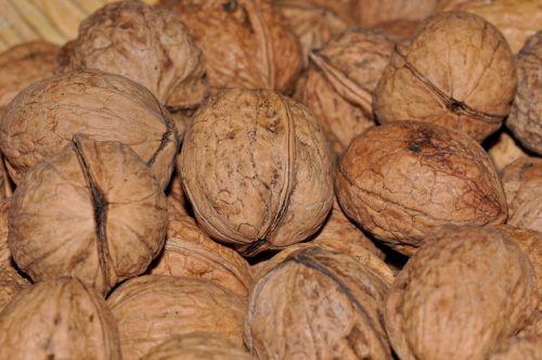 walnuts nuts food