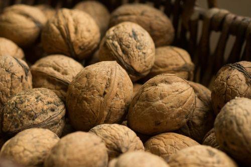 walnuts nut fruit juglans