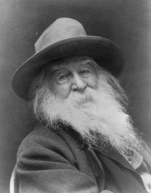 Walt Whitman,vintage,amerikietiškas autorius,autorius,amerikietis,retro,istorija,istorinis,klasikinis,rašytojas,poetas,eseistė,humanistas,žurnalistas,nemokama eilėraštis,žolės lapai,vienspalvis,juoda ir balta